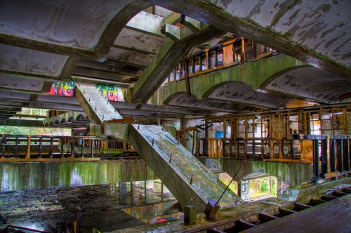 st peters seminary graffiti